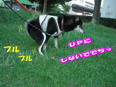 200801-5.jpg