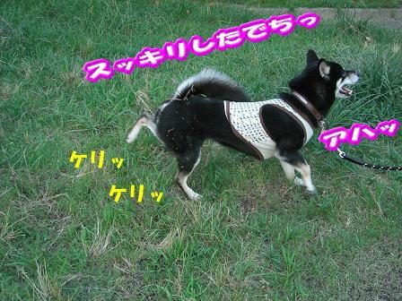 200801-6.jpg