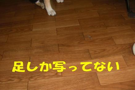 200807-1.jpg