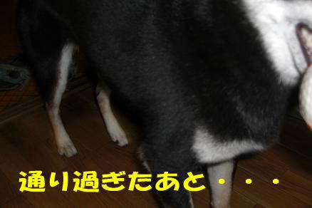 200807-3.jpg