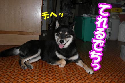 200807-8.jpg