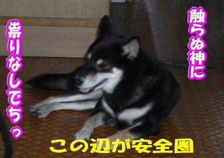 200811-3.jpg