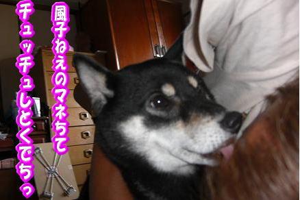 200811-5.jpg