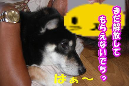 200811-6.jpg