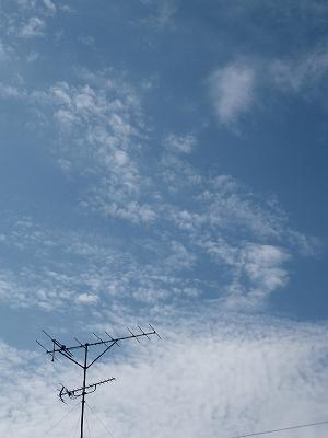 空(縦だよん)