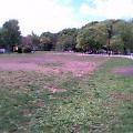 06.4.21井の頭公園
