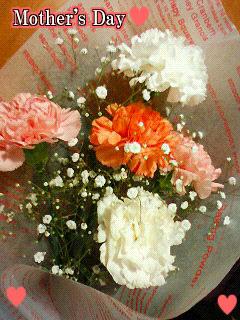 carnation2.jpg