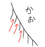 kao_ke2.jpg