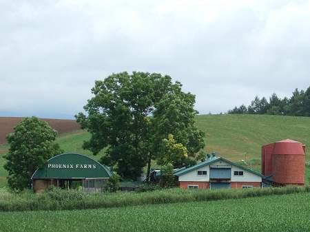 フェニックス牧場