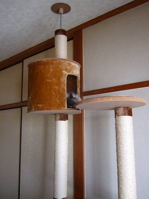 2008_0415kukku0170.jpg