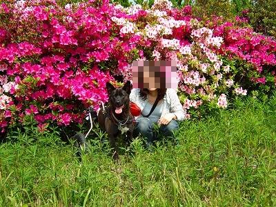 2008_0429kukku0092.jpg