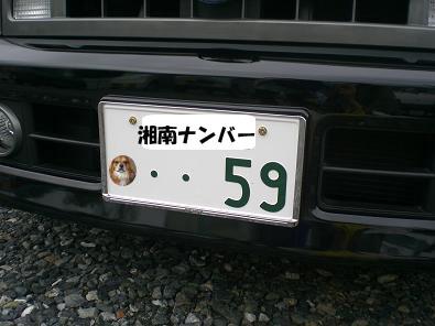 画像ブログ② 888のコピーのコピー