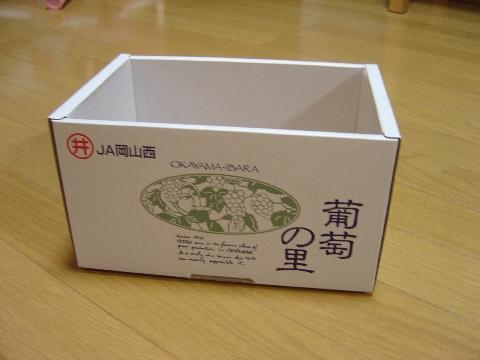 ぶどうの箱です(2008.08.07)