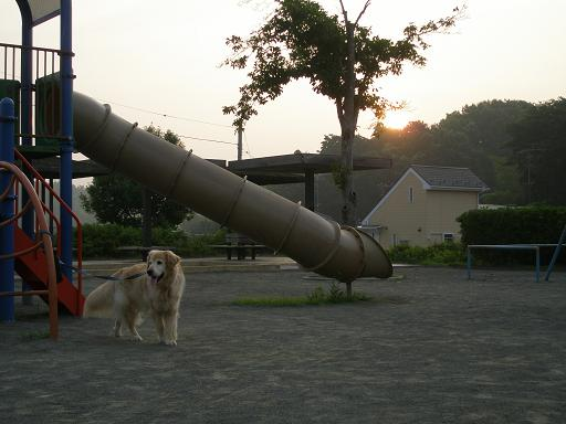 画像 097