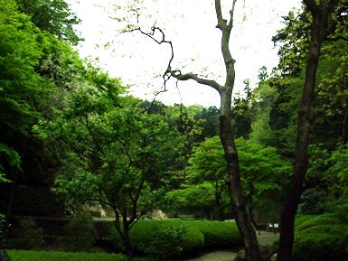 鎌倉 庭園