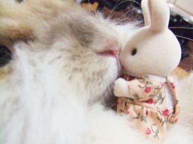 粥ニア kiss2