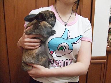 bunnyなTシャツ 着てみた
