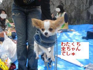gonnkochan_20080421150736.jpg