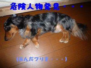画像 037-