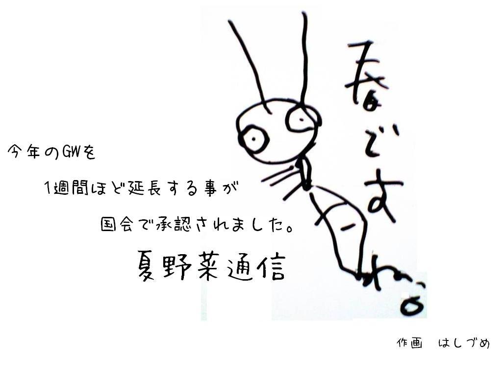 夏野菜通信6