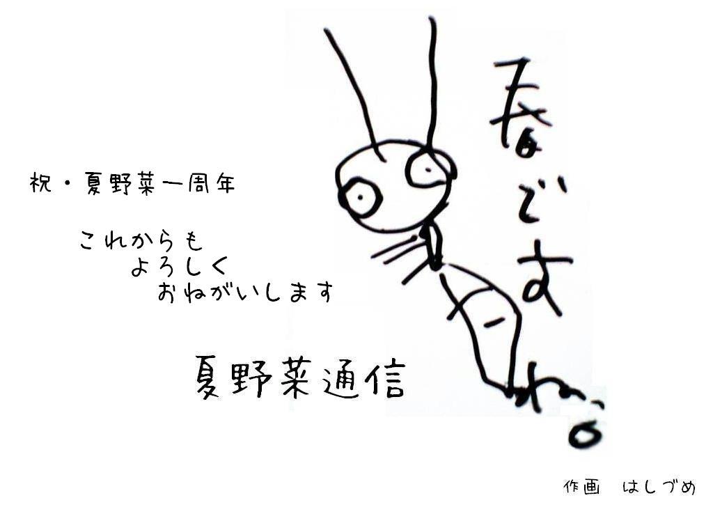夏野菜通信8