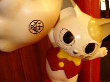 餃子スタジアムの猫