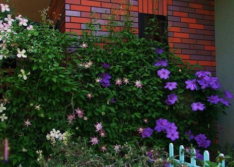 2008_05062008 5月6日-40012