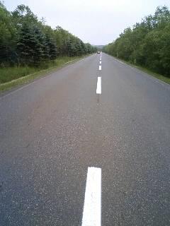 釧路湿原横断道路