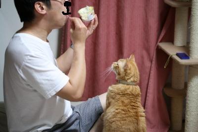 Kotetsu 何食うてるん?