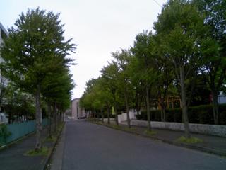 TS380474.jpg