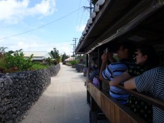 20080720_水牛車からの風景(1)