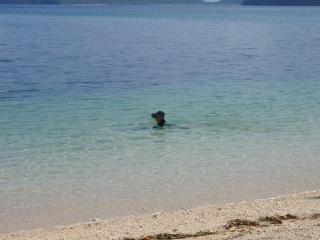 20080724_イダの浜(3)