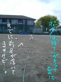 CIMG7597-2.jpg