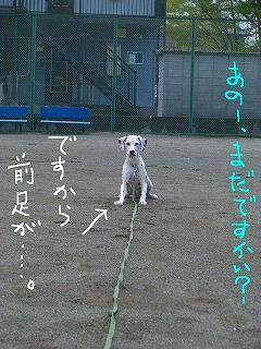 CIMG7598-2.jpg