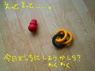 CIMG7876-2.jpg