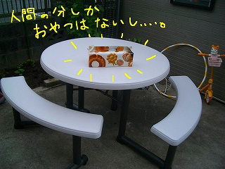 CIMG8342-2.jpg