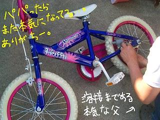 CIMG8455-2.jpg