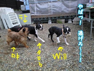 5-20_20080510231441.jpg