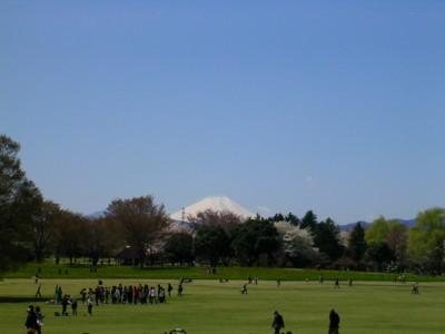 08-4-1昭和記念公園(富士山)