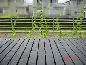 2008_08_10_1.jpg