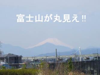富士山が綺麗に見えるの