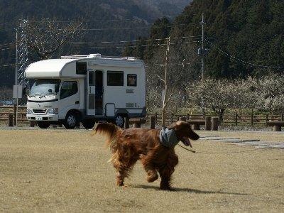 20080322hoshino3