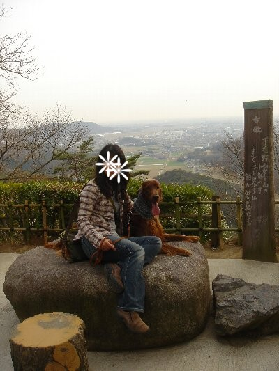 20080323karasawa6