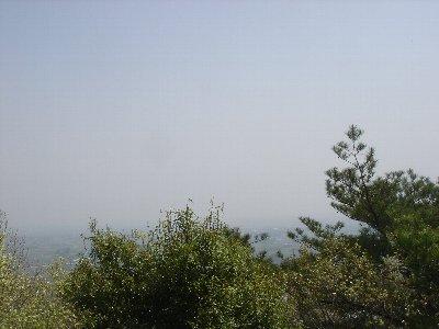 20080415oyama6