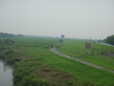 20080628w1