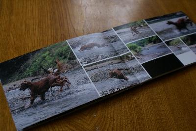 20080717photobook2