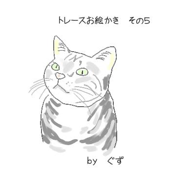 kuku-1.jpg