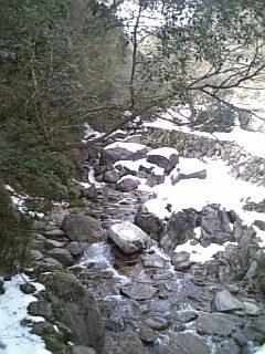 2008031605.jpg