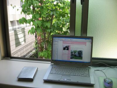 blog 184