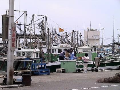 20080402kaeru.jpg